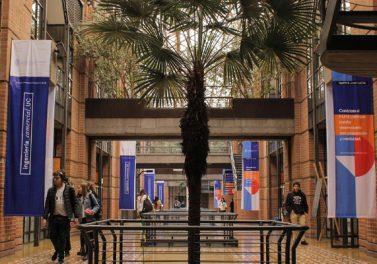 Facultad elaborará nuevo Plan de Desarrollo